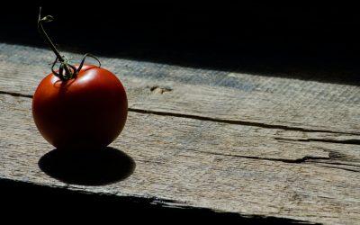 L'estate e l'insalata di pomodori di mia nonna